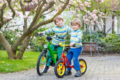 Two little kid boys biking with bicycles in park Royalty Free Stock Images