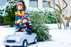 Two little kid boys driving toy car with Christmas tree Royalty Free Stock Photography