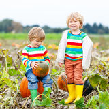 Two little kids boys with big pumpkins on patch Royalty Free Stock Photo