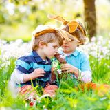 Two little kids boys and friends in Easter bunny ears during traditional egg hunt in spring garden, outdoors. Siblings. Eating chocolate bunnies and eggs. Old royalty free stock images