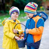 Two little kids boys and friends making traditional Easter egg hunt in spring garden, outdoors. Siblings having fun with. Finding colorful eggs. On cold day royalty free stock photography