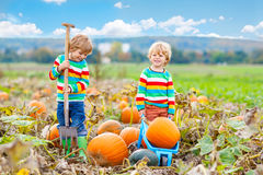 Two little kids boys sitting on big pumpkins on patch Royalty Free Stock Images
