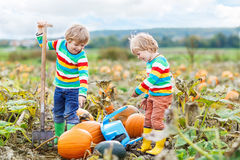 Two little kids boys sitting on big pumpkins on patch Royalty Free Stock Photo