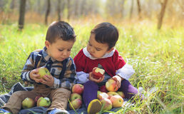 Two little kids eating apples in the park in autumn Stock Image