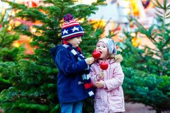 Two little kids eating sugar apple on Christmas market Royalty Free Stock Image