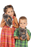 Two little kids holding a gray kittens Royalty Free Stock Photos