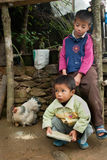 Two little Lepcha boys and hen family Royalty Free Stock Image