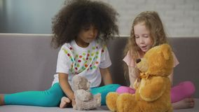 Two little multiracial girls sitting on couch and playing with teddy bears. Stock footage stock video