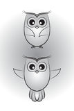 Two little owlet Stock Photo