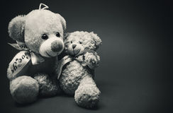 Two Little Plush Bears Royalty Free Stock Photo