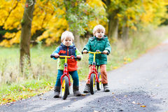 Two little sibling boys having fun on bikes in autumn forest. Stock Photos