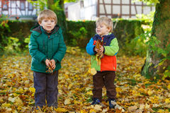 Two little sibling boys having fun with yellow foliage in autumn Stock Photo