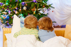 Two little sibling boys reading book on Christmas. Two cute little blond sibling boys reading a book together in bed near Christmas tree with lights and Stock Image
