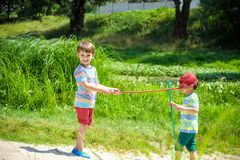 Two little sibling brothers playing with scoop-net on the meadow Stock Photos