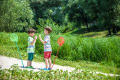 Two little sibling brothers playing with scoop-net on the meadow Stock Image
