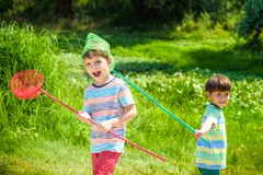 Two little sibling brothers playing with scoop-net on the meadow on warm and sunny summer or spring day Stock Image