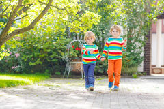 Two little sibling kid boys in colorful clothing walking hand in Royalty Free Stock Photo