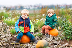 Two little siblings sitting on big pumpkin on cold autumn day Royalty Free Stock Images