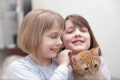 Two little sisters   with cat Stock Photography