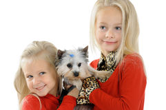 Two little sisters with dog Stock Images