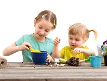 Two little sisters are engaged in gardening Royalty Free Stock Images