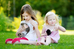 Two little sisters feeding kittens with milk Royalty Free Stock Photos