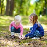 Two little sisters gathering pine cones Royalty Free Stock Image