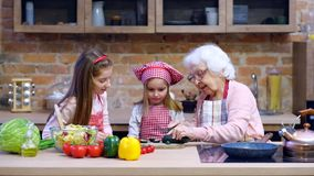 Two little sisters with granny cooking together. Two little sisters with granny cooking healthy vegetable salad together at kitchen at home stock video