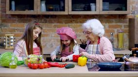 Two little sisters with granny cooking together. Two little sisters with granny cooking healthy vegetable salad together at kitchen at home stock video footage