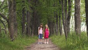 Two little sisters holding hands and cuddling. Children`s friendship. Two little girls hold hands and walk down the green alley. Children walk outdoors. Two stock footage