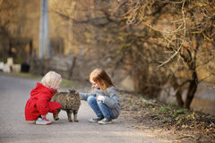 Two little sisters met a cat Stock Photos