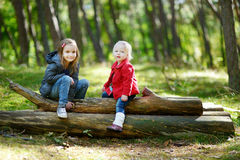 Two little sisters sitting on a big log Stock Photography