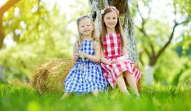 Two little sisters sitting on a haystack in apple tree garden on warm and sunny summer day Stock Photo