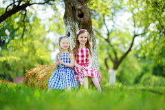 Two little sisters sitting on a haystack in apple tree garden Stock Photo