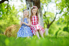 Two little sisters sitting on a haystack in apple tree garden Stock Image