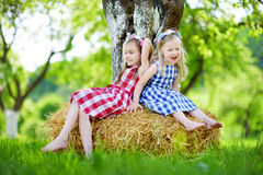 Two little sisters sitting on a haystack in apple tree garden Stock Photos