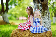 Two little sisters sitting on a haystack in apple tree garden Royalty Free Stock Photos
