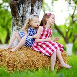 Two little sisters sitting on a haystack in apple tree garden Royalty Free Stock Images