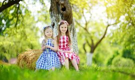 Two little sisters sitting on a haystack in apple tree garden on warm and sunny summer day Stock Photos