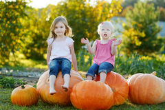 Two little sisters sitting on a huge pumpkins Stock Photos