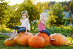 Two little sisters sitting on a huge pumpkins Stock Photography