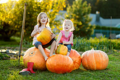 Two little sisters sitting on huge pumpkins Stock Photo