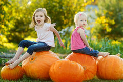 Two little sisters sitting on huge pumpkins. On a pumpkin patch Stock Images