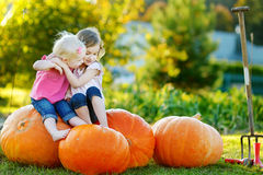 Two little sisters sitting on huge pumpkins Royalty Free Stock Image