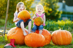Two little sisters sitting on huge pumpkins Stock Images