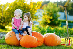 Two little sisters sitting on huge pumpkins Royalty Free Stock Photo