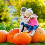 Two little sisters sitting on huge pumpkins Royalty Free Stock Photography