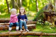 Two little sisters sitting on a log in a forest Royalty Free Stock Photography