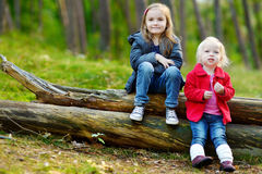 Two little sisters sitting on a log in a forest Royalty Free Stock Image