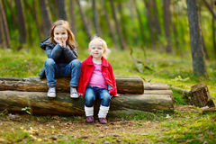 Two little sisters sitting on a log in a forest Stock Image